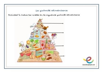 Fichas pirámide nutricional_002