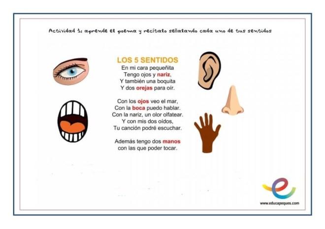 fichas cinco sentidos del cuerpo humano_001