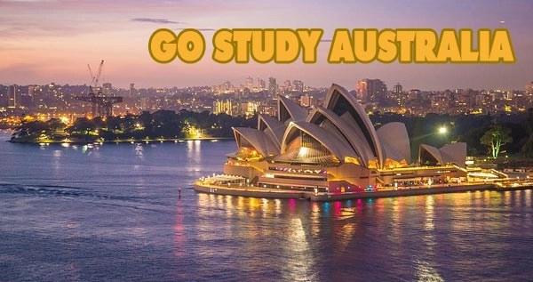 GO STUDY