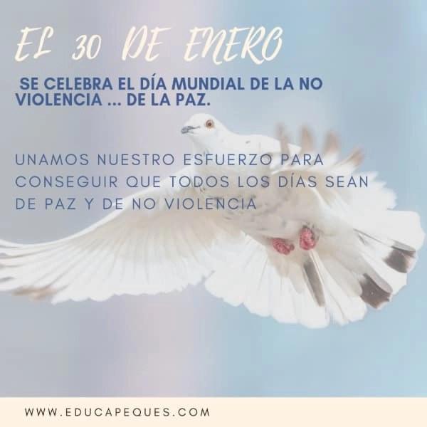 Paz_Paloma1