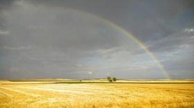 arcoiris-4
