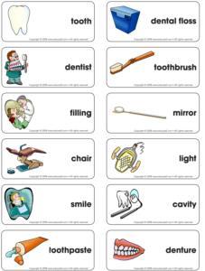 Dental Healt Theme And Activities Educatall