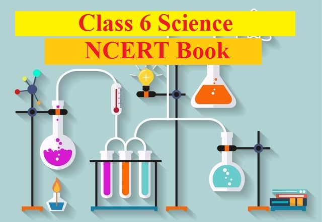 NCERT Solutions for Class 6 Science PDF Download