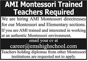 Association Montessori Internationale Jobs 2021