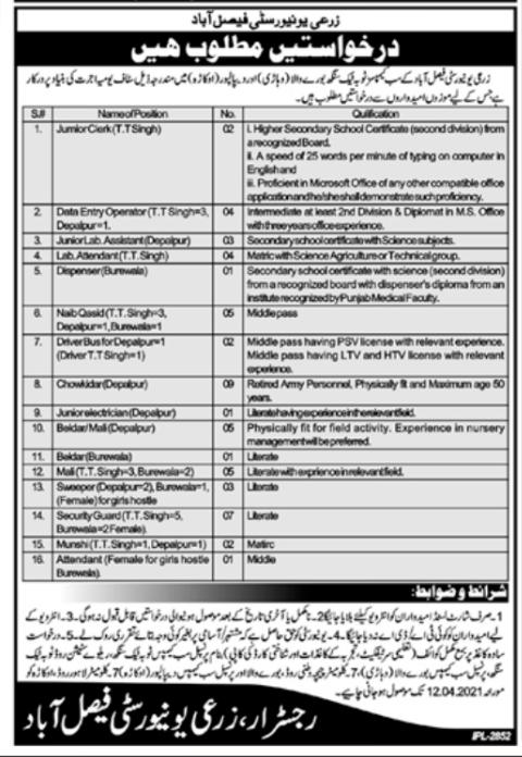 Zari University Faisalabad jobs 2021