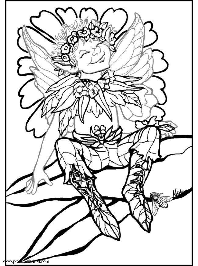 Coloriage Elfe Dargent Img 6127