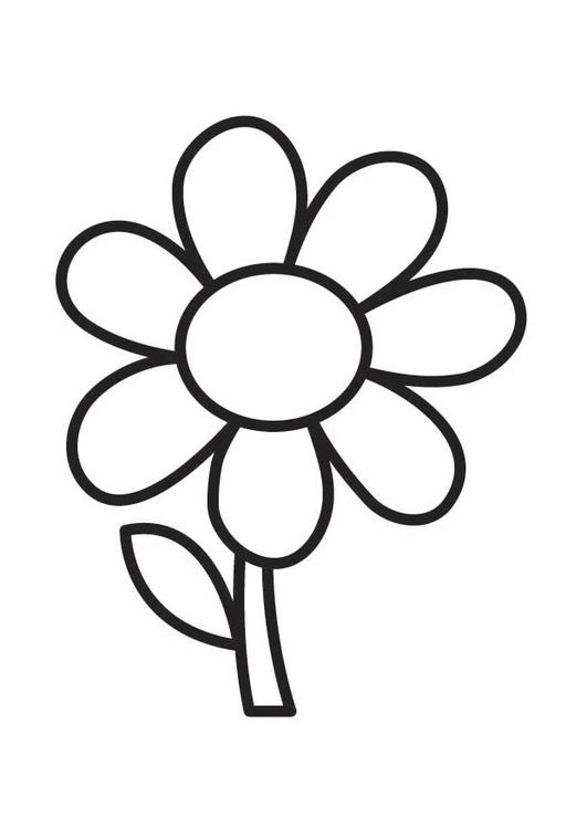 Coloriage Fleur 305x431