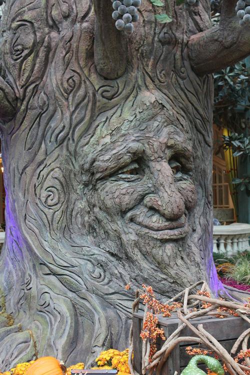 Photo arbre de conte de fées