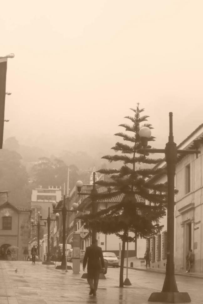 en la neblina
