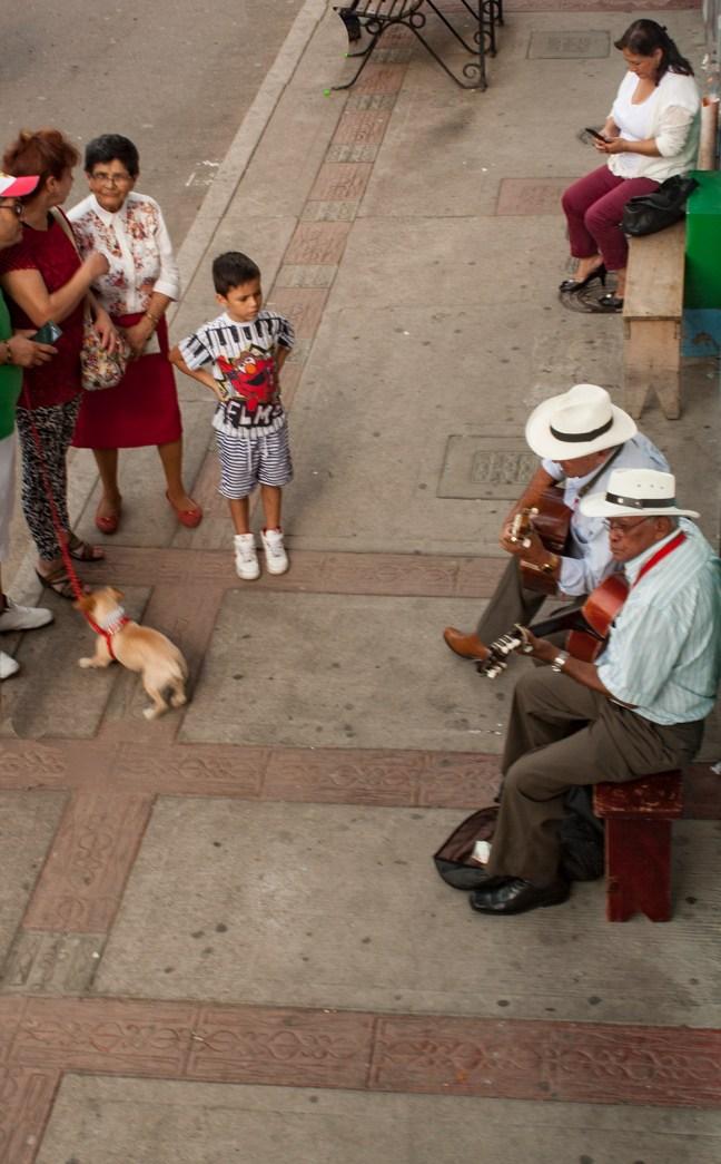 Cancioneros Salento, Quindío, Colombia
