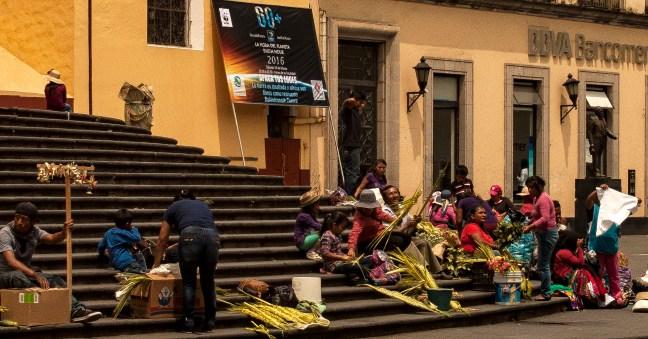 Palmas para el domingo catedral de Xalapa, Veracruz, México