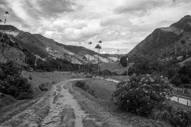 El camino Valle del Cocora, El Quindío, Colombia