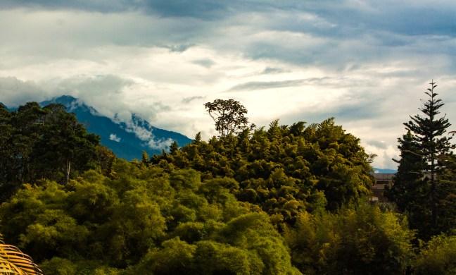 Vista desde el Parque de la Vida Armenia, Quindío, Colombia