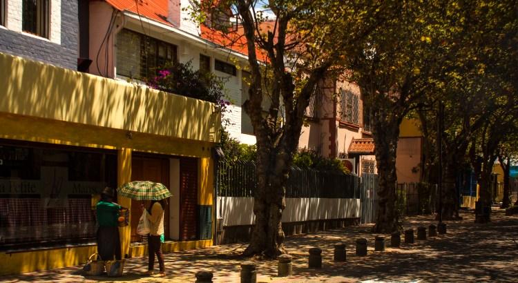 La calle de los Maples La Mariscal, Quito, Ecuador