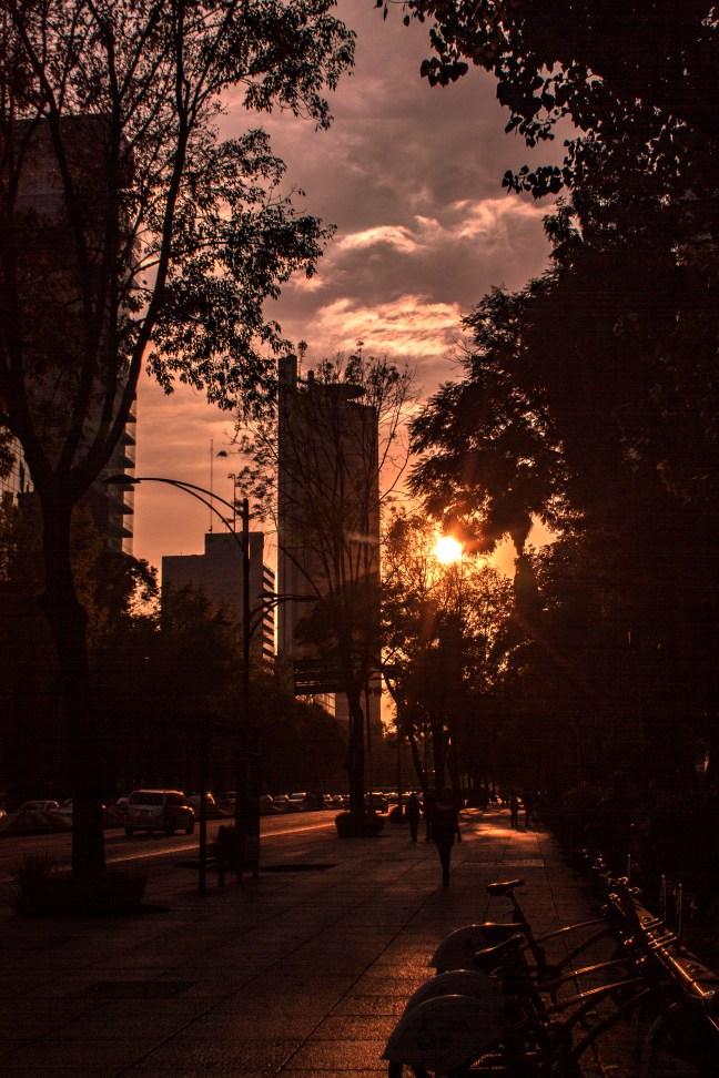 Crepúsculo Ciudad de México, CDMX, México