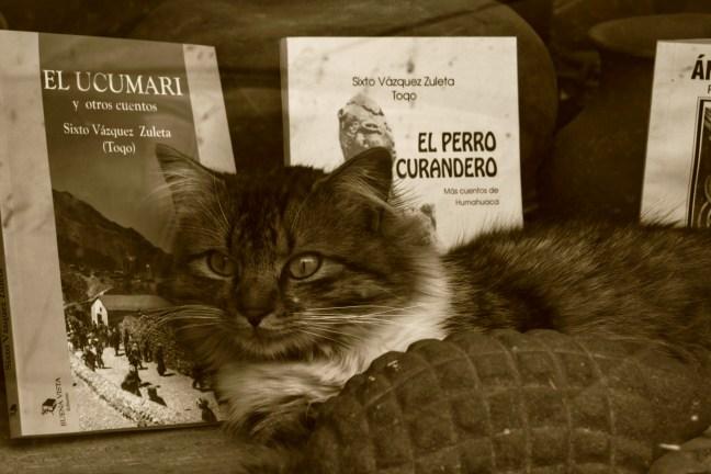 Entre libros Humahuaca, Jujuy, Argentina