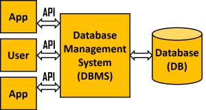 Sixth Chapter Lesson-2: Database Management System(DBMS) and RDBMS