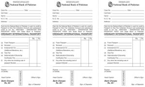 Pakistani-Passport-Challan-Form