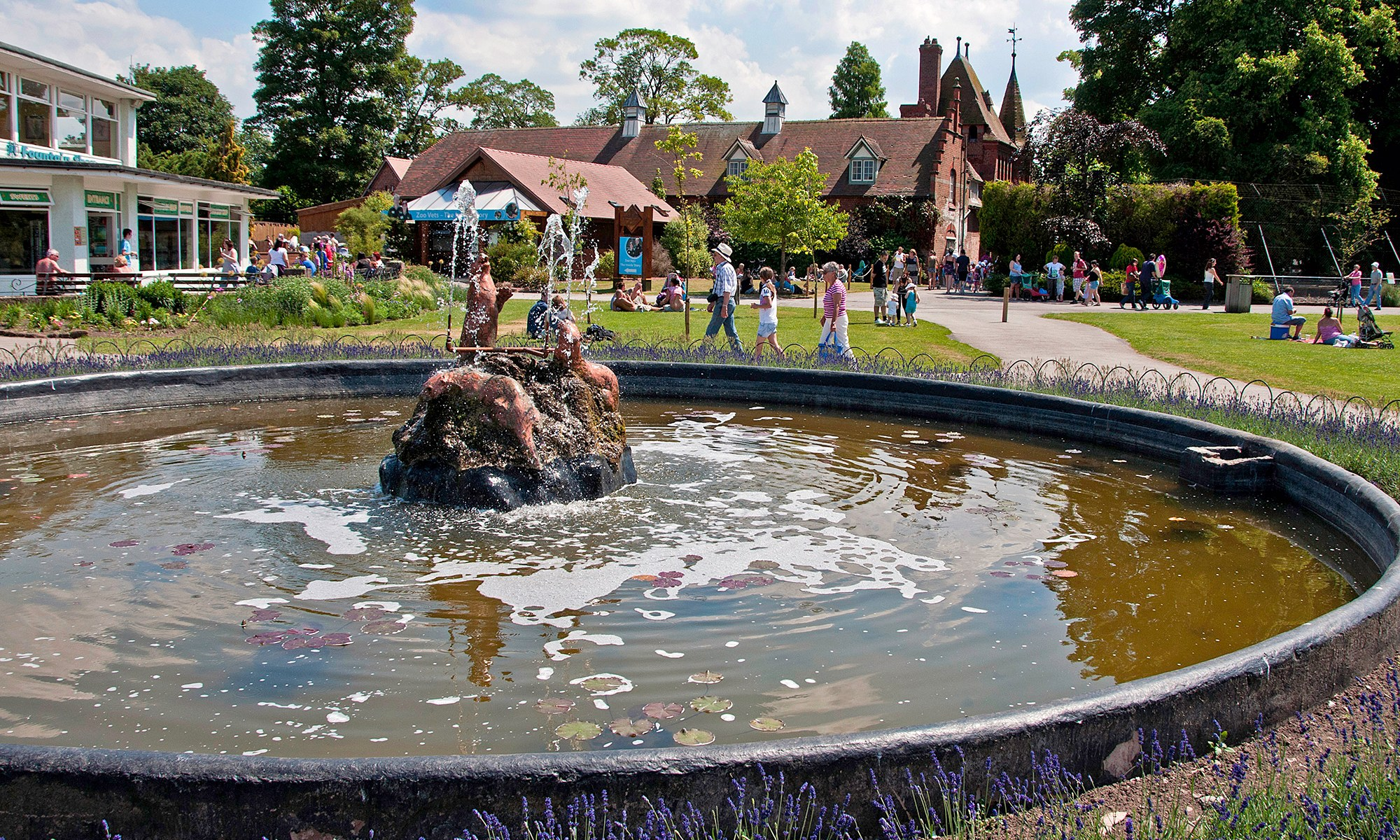 Fountain at Chester Zoo