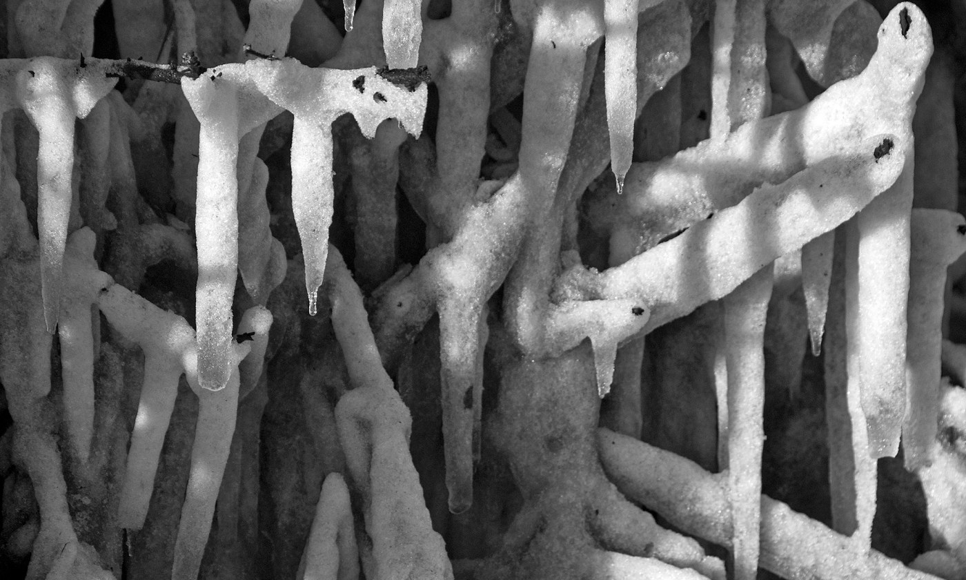 Icicle Pattern in Black and White