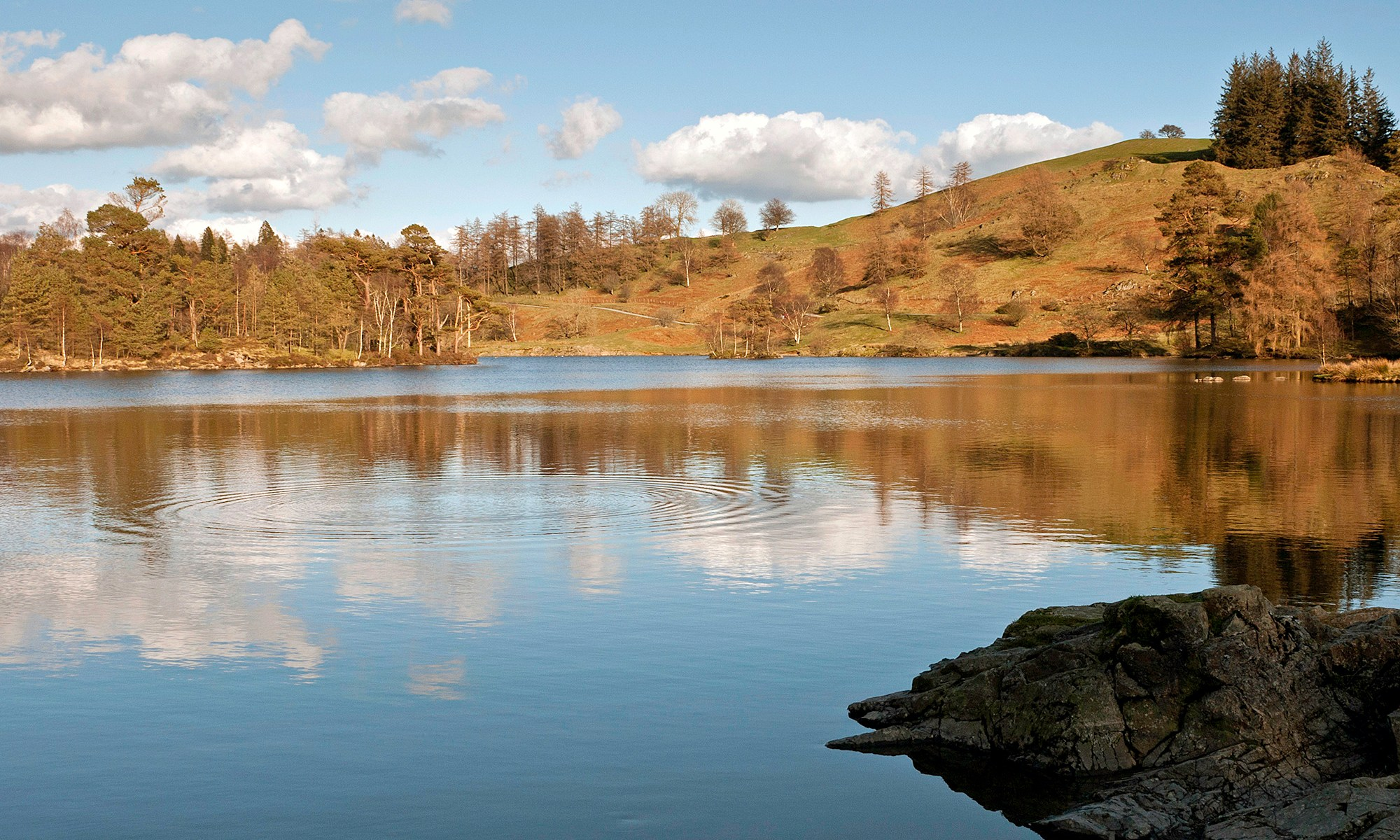 Tarn Hows Lake