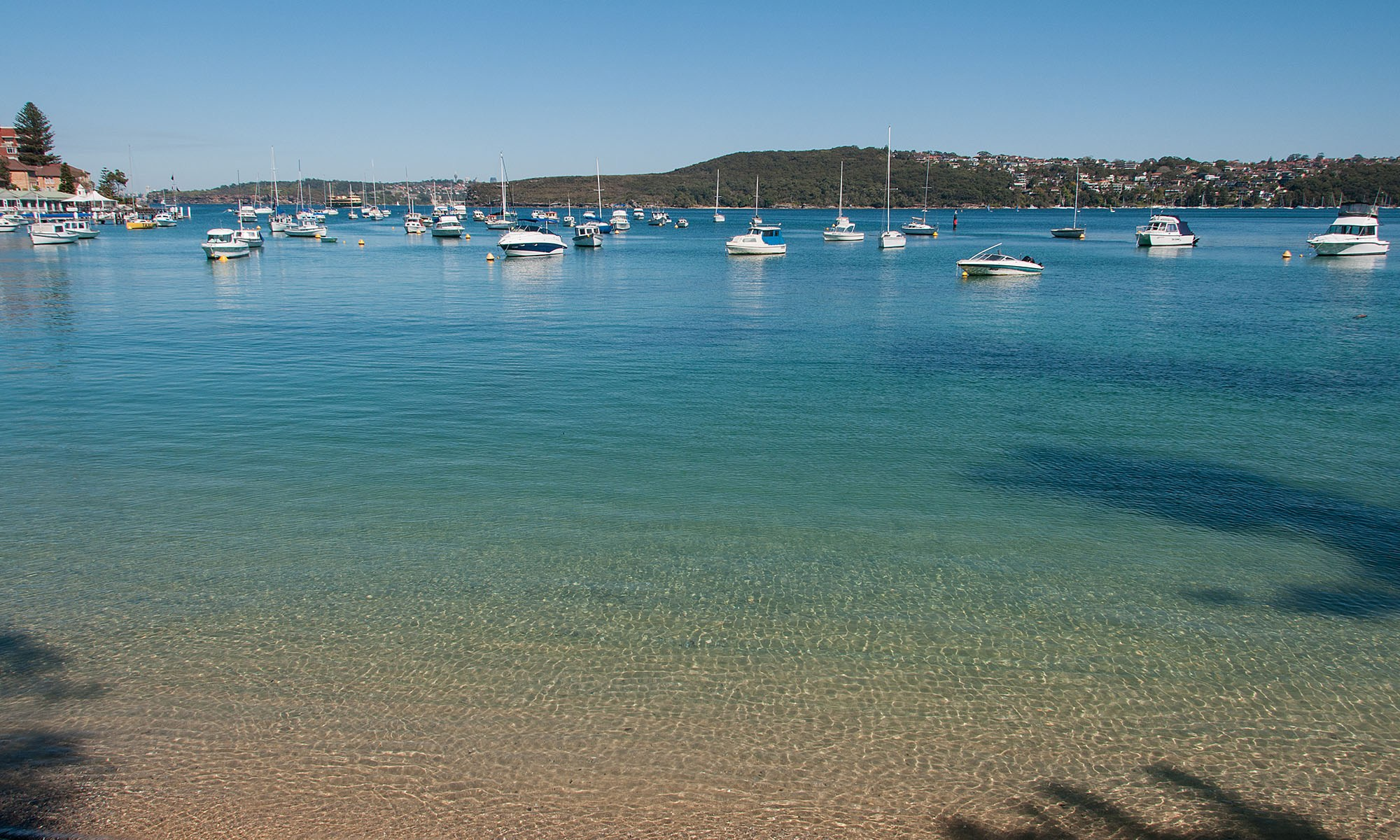 Manly Cove