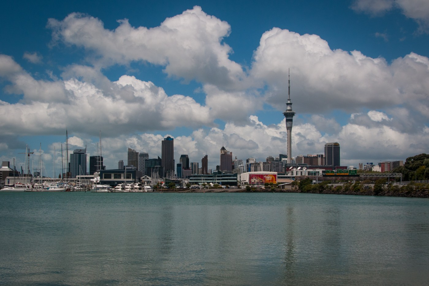Auckland Skyline from Westhaven