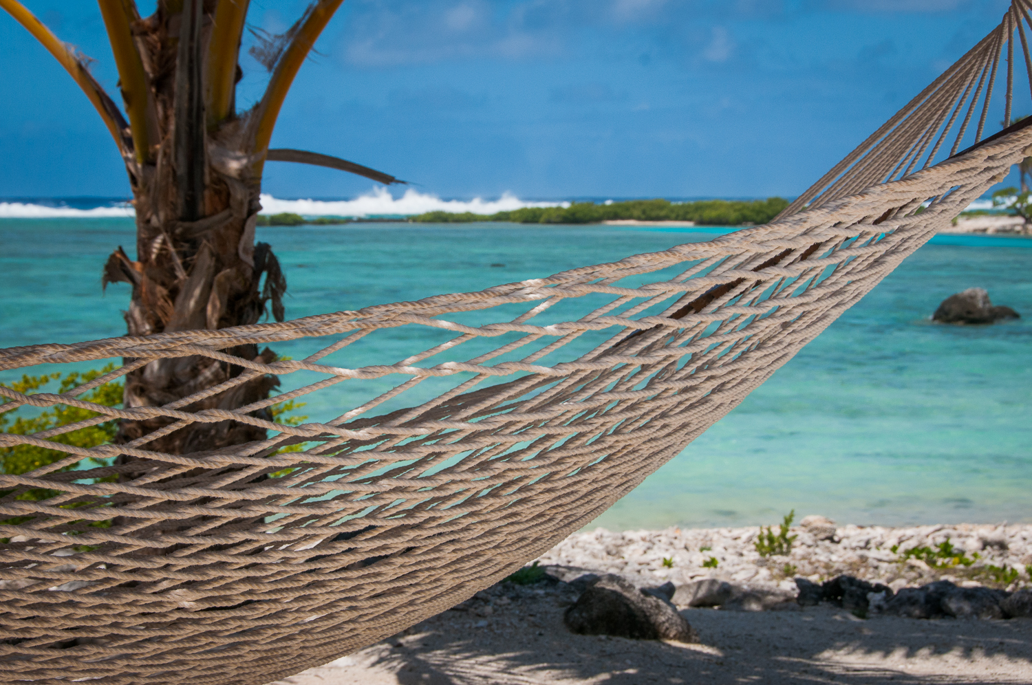 Hammock in Paradise, Cook Islands