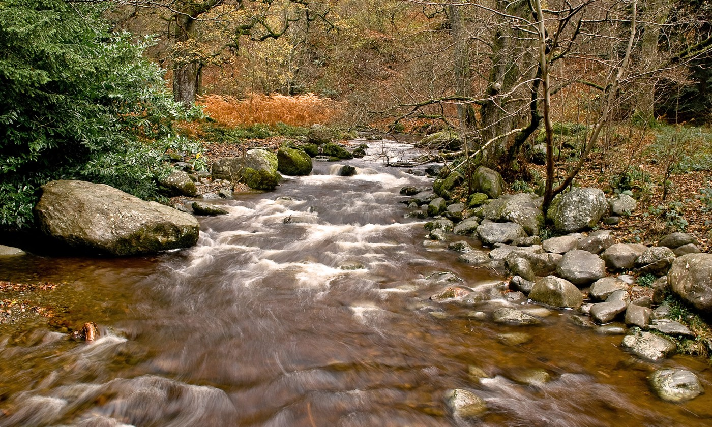 Aira Beck, Ullswater, Lake District