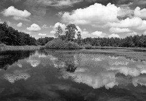 Skyscape Reflections in Black and White