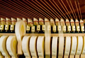 Interior Details of Piano Strings and Hammers