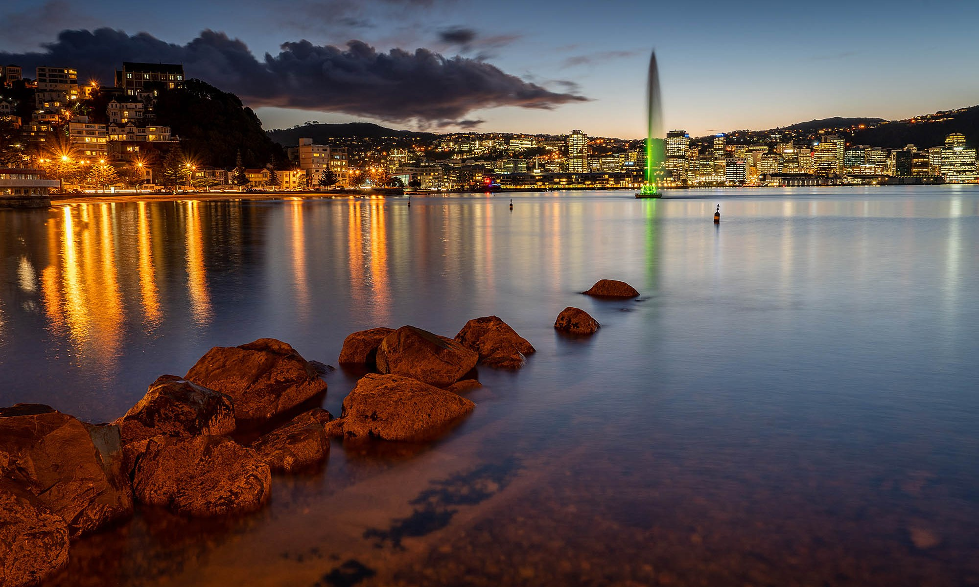 Oriental Bay at Night