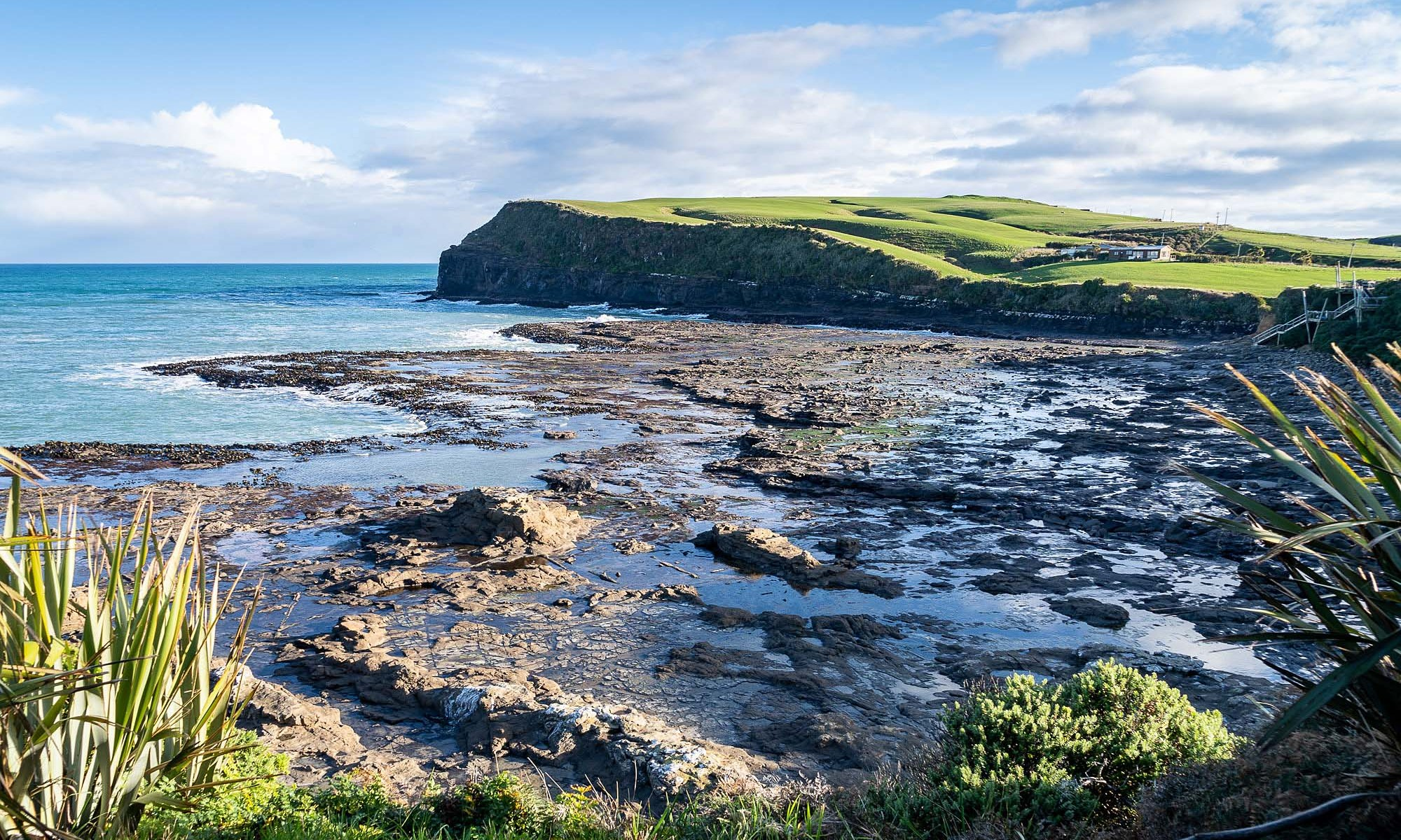 Curio Bay, Catlins