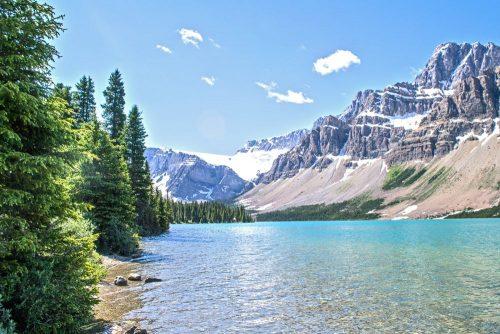 Alberta Provincial Nomination Program