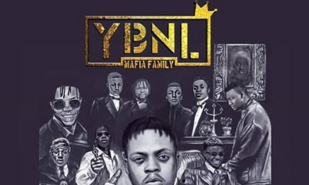 """Fireboy's """"Jealous"""" Is The Redeeming Song on the YBNL Mafia Family Album"""