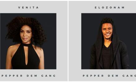 #BBNaija Update: Venita Akpofure & Elozonam Ogbolu Join The House