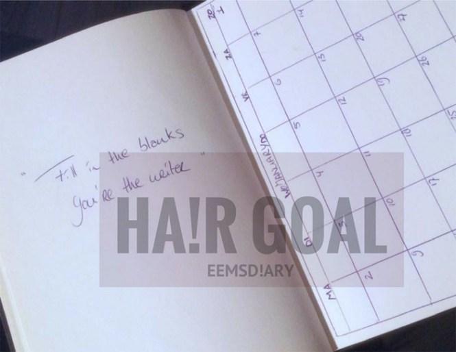 hair goal '17