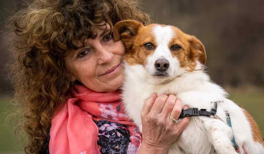 fotoshoot met hond Nieuw-Vennep Hoofddorp