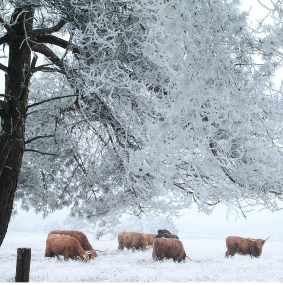 winter thuisopnummer14