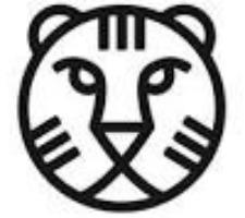 logo IFFR 2017