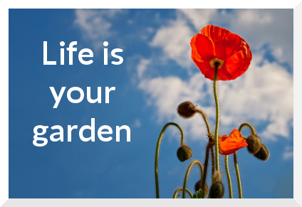 life is your garden
