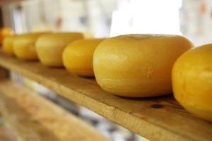 kaas van De Leyedaeler