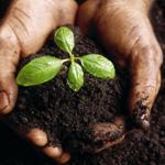 Church communication advice to church planters