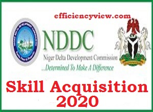 Photo of About NDDC Skill Acquisition Training Registration Program 2020/2021