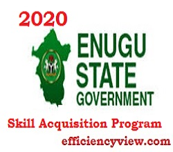 Photo of Apply for 2020/2021 Enugu State Skill Acquisition Program 2020 for Graduates/Non Graduates apply here