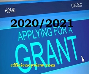 Federal Government Grants 2020/2021 for NYSC/Entrepreneurs ...
