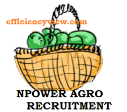 Photo of Npower Agro Recruitment Application Form 2020 – see how to apply here