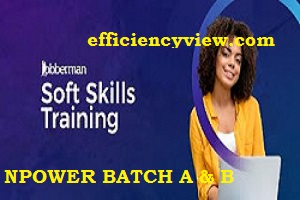 NSIP Jobberman Free Soft Skills Training Recruitment for Npower Batch A and B Beneficiaries 2020/2021