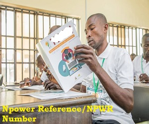How to Review and Submit Application via Npower Recruitment Portal to get Reference/NPWR Number