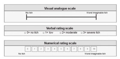 visual analogue scale, verbal rating scale and a ten point numerical rating scale